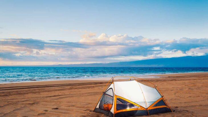 砂浜でチクっと刺してくる虫? 海キャンプで気になるあの痛みは何だ!?